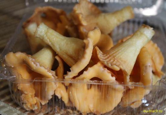 Печенье грибы рецепты фото